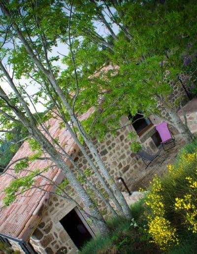 PetitRias-couleurs-0518-web-30